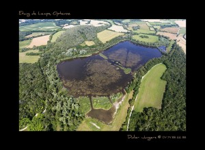Etangs de Lemps - photo : D. Jungers